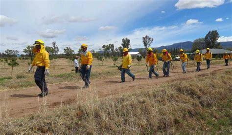 listado de beneficiados por la conafor 2016 conafor lista para combatir incendios ntr zacatecas com