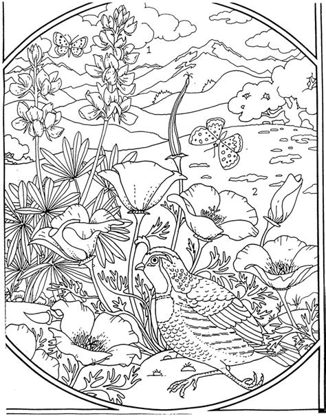 Advanced Landscape Coloring Pages | quail coloring pages for the birds pinterest