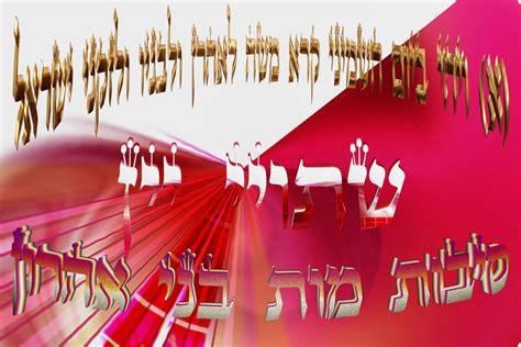 parashat sh 233 mini itsik elbaz jardin de la torah