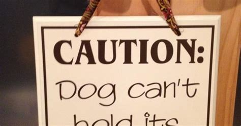 how can a puppy hold it caution can t hold it s licker would be so above a food bowl www