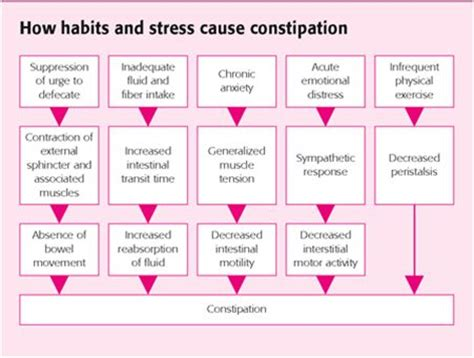 Cool Home Remedy To Clear Up Stress Induced Breakouts 2 by 49 Best Images About Constipation On Bristol