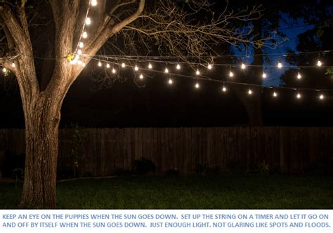 cer lights string string lights for sale at the string lights store