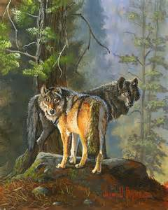 Wolf Gray Paint by Gray Wolves Painting By Jeff Brimley