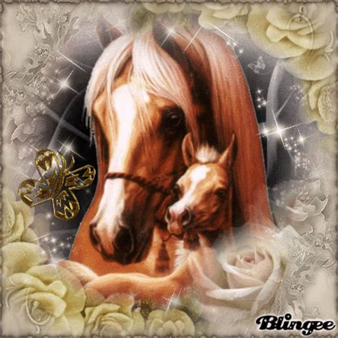 mommy  baby horses picture  blingeecom