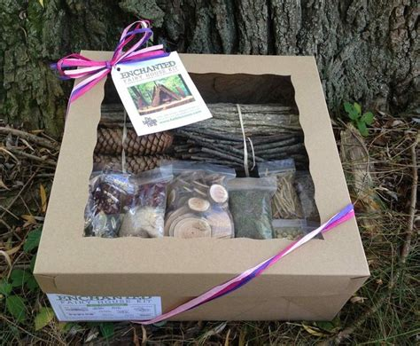 Enchanted Fairy House Kit Gifts Pinterest