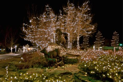 many lights of christmas colorado springs christmas