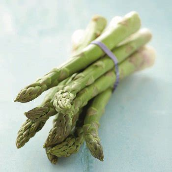 cuisiner asperge verte recettes avec des asperges vertes cuisine et vins de