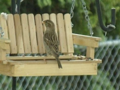 Swing Bird Feeder Porch Swing Bird Feeder Northwest Outdoor Wood Crafts