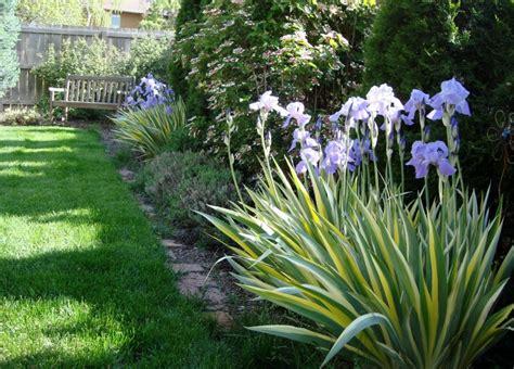 Garden Border Fence Ideas How To Choose Plants As Landscape Border Ideas Back Fence