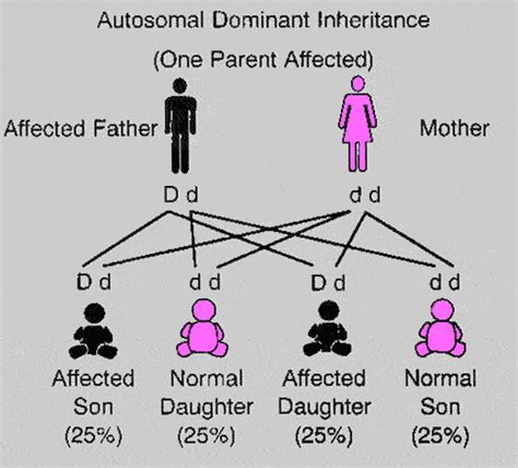 definition pattern disease dominant and recessive inheritance futureslps