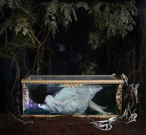 Glass Coffin Pictures to Pin on Pinterest   PinsDaddy