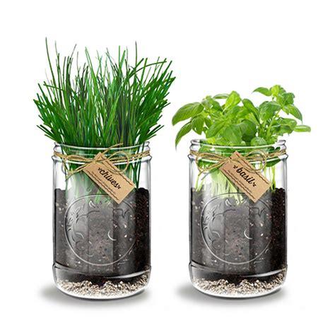 indoor herb gardens   indoor gardens