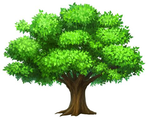 images of trees png hd images of trees transparent hd images of trees png