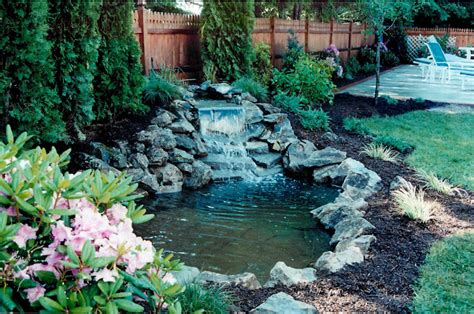 backyard pond with waterfall ponds waterfalls poolscapes design island kito