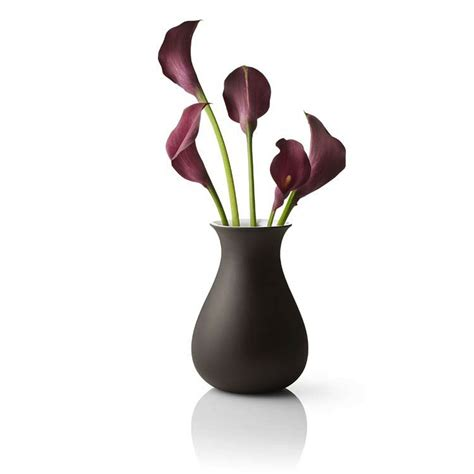 Empty Vase Boerne Tx by Vase With Flowers Motorcycle Review And Galleries