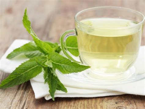9 amazing benefits of peppermint tea organic facts