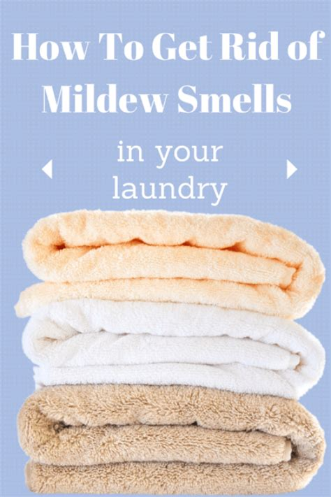 how to get rid of musty smell in furniture 6 laundry tips and tricks miss information