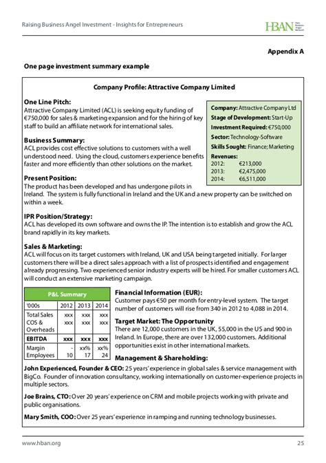 investment summary template hban raising business investment insights for