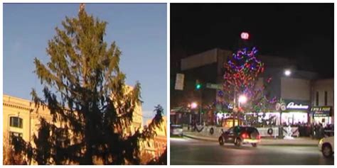 christmas photos reading pa residents demand town s pathetic tree be removed fox8
