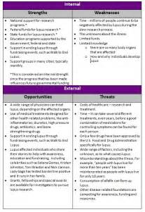 Analysis Essay Sle by Swot Assignment