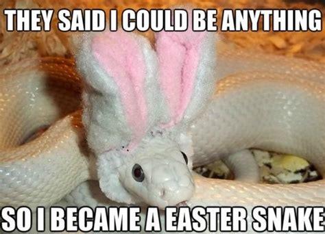 Dirty Easter Memes - funny easter snake meme jokes 2014