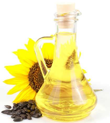 sunflower oil hair products amazing benefits of sunflower oil for skin and hair