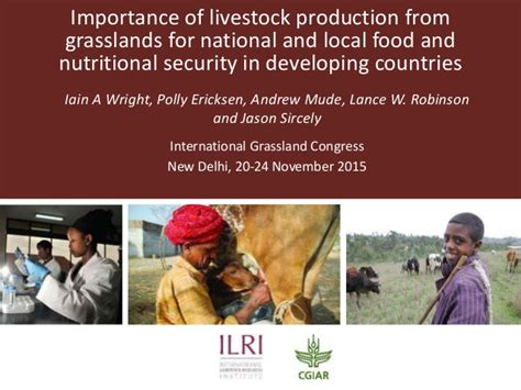 developing countries producing new art the national importance of livestock production from grasslands for