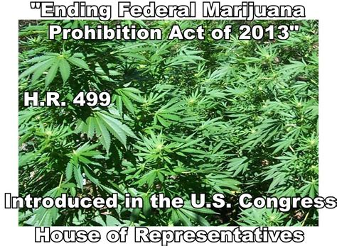 section 102 of the controlled substances act entire text of h r 499 ending federal marijuana
