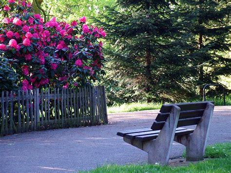 bench in the garden garden benches seats