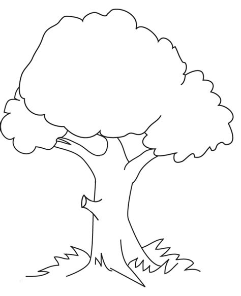 get this tree coloring pages printable b6qsa