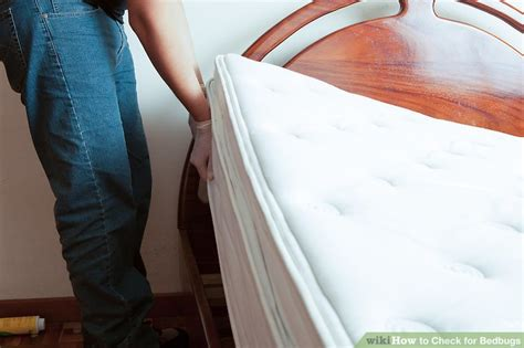 can bed bugs live on air mattress how to check for bedbugs with pictures wikihow