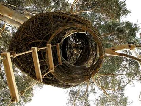 eco homes weaver s nest following birds for carbon