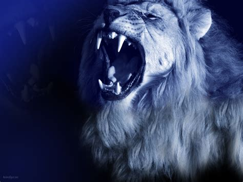 wallpaper blue lion blue lion roaring pictures to pin on pinterest pinsdaddy
