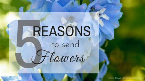 Reasons To Send Flowers by Bloomin Everything You Want To About Flowers