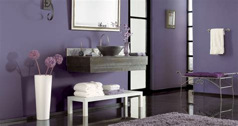 Purple And Grey Bathroom Decor by Room Colour Splash Let It Purple