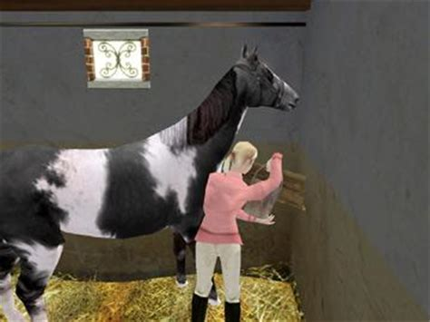 download free full version horse games horses play free online horse games horses game downloads