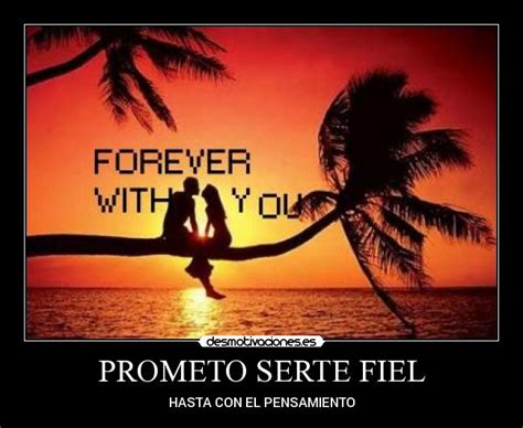imagenes de amor verdadero y fiel prometo serte fiel desmotivaciones