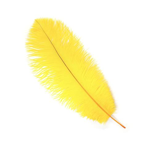 www feather ostrich feathers narrow tipless drabs drabs ostrich