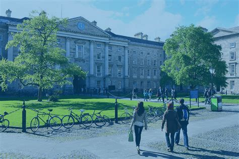 Www Tcd Ie Business Mba by Msc Marketing Masters Business School