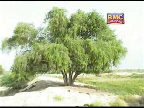 balochi song muslim hammal ishq maka muslim hammal balochi song