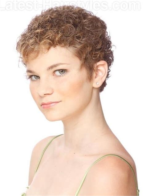 feathered curls pixie photos of soft feathered pixie haircuts short hairstyle 2013