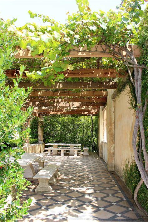 vines  shade vines  create shade   garden
