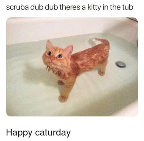Caturday Meme - 25 best memes about caturday caturday memes