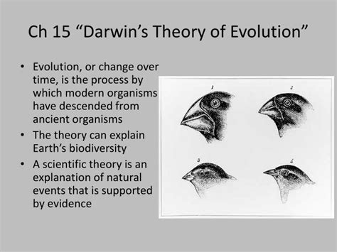 theories of evolution section 15 2 review section 15 2 review theories of evolution 28 images