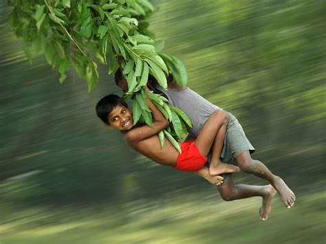 la swing tree branch swing picture national geographic photo of