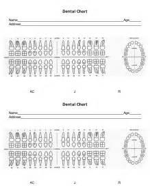 dental chart template diagram of dental teeth numbers diagram get free image