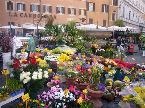 roma co dei fiori co de fiori rome italian piazza architecture
