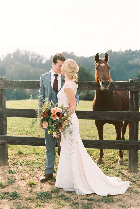 Wedding Attire For Horses by 25 Best Ideas About Country Wedding Groomsmen On