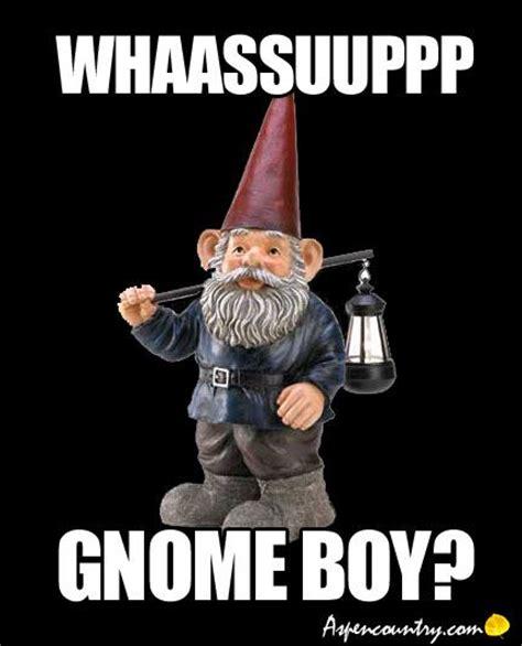 Gnome Meme - 17 best images about fav memes on pinterest humor