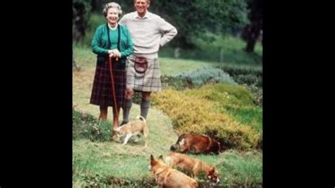 how many corgis does the queen have the queen and her dogs pets4ever youtube
